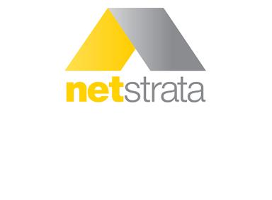 Net Strata logo